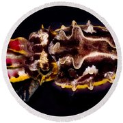 Flamboyant Cuttlefish Round Beach Towel
