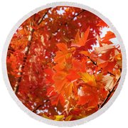 Flaming Maples Round Beach Towel