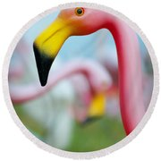 Flamingo 1 Round Beach Towel