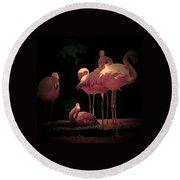 Flamingo 3 Round Beach Towel