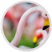 Flamingo 5 Round Beach Towel