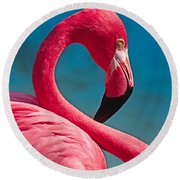 Flexible Flamingo Round Beach Towel