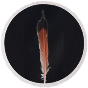 Flick Of A Feather Round Beach Towel