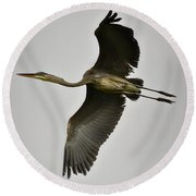 Flight Of The Great Blue Heron Round Beach Towel