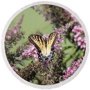 Flitter - Butterfly - Swallowtail Round Beach Towel