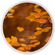 Floating On Orange Fall Leaves Round Beach Towel