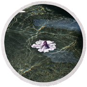Floating On Reflections Round Beach Towel