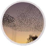 Flock Of European Starlings Round Beach Towel