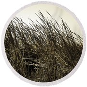 Florida Everglades 6 Round Beach Towel