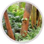 Florida Palms And Ferns Round Beach Towel