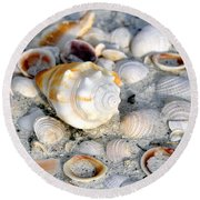 Florida Shells Round Beach Towel