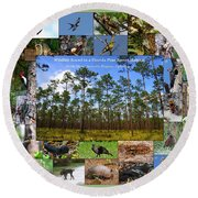 Florida Wildlife Photo Collage Round Beach Towel
