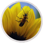 Flower And Bug Round Beach Towel