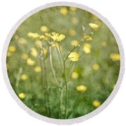Flower Of A Buttercup In A Sea Of Yellow Flowers Round Beach Towel