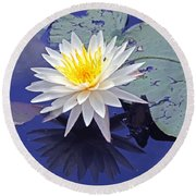 Flowering Lily-pad- St Marks Fl Round Beach Towel