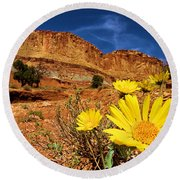 Flowers And Buttes Round Beach Towel