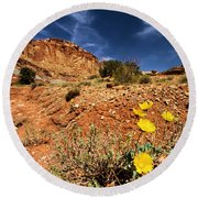 Flowers And Canyons Round Beach Towel