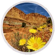 Flowers In The Capitol Round Beach Towel