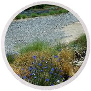Flowers In The Gold Hill Desert Round Beach Towel