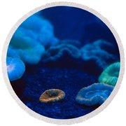 Fluorescent Corals Round Beach Towel