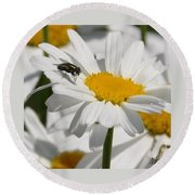 Fly In The Flower Round Beach Towel