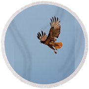 Flying Red Tail 204-2 Round Beach Towel