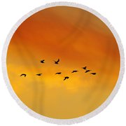 Flying To The Roost Round Beach Towel