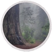 Fog And Redwoods Round Beach Towel