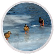 Follow The Leader Duck Style Round Beach Towel