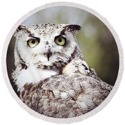 Followed Owl Round Beach Towel