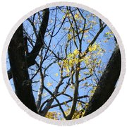For The Trees Round Beach Towel