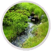 Forest Creek In Newfoundland Round Beach Towel