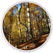 Forest Fall Colors 4 Round Beach Towel