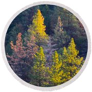 Forest Foliage  Round Beach Towel