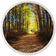 Forest Path In Autumn Round Beach Towel