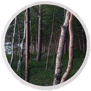 Forest, Shore Of Lake Superior Round Beach Towel