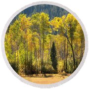 Forested Light Round Beach Towel