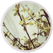 Forsythia  Round Beach Towel