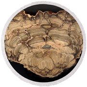 Fossil Stromatolite Round Beach Towel