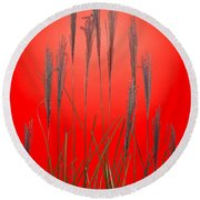 Fountain Grass In Red Round Beach Towel