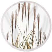 Fountain Grass In White Round Beach Towel by Steve Gadomski