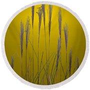 Fountain Grass In Yellow Round Beach Towel