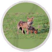 Fox And Baby Round Beach Towel