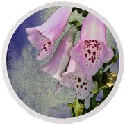 Fox Glove Blue Grunge Round Beach Towel by Bill Cannon