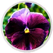 Fresh Face Pansy Round Beach Towel