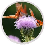 Fritillary Wings And Thistles Round Beach Towel