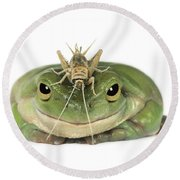 Frog And Grasshopper Round Beach Towel