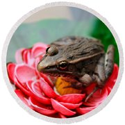 Frog On Lily Pad Two Round Beach Towel