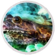 Frog Ready To Be Kissed Round Beach Towel