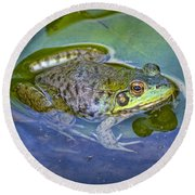 Frog Resting On A Lily Pad Round Beach Towel